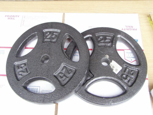 """Two, 25 Lbs Unbranded Barbell Dumbbell Standard 1"""" Weight Plates 50 Pounds Total"""