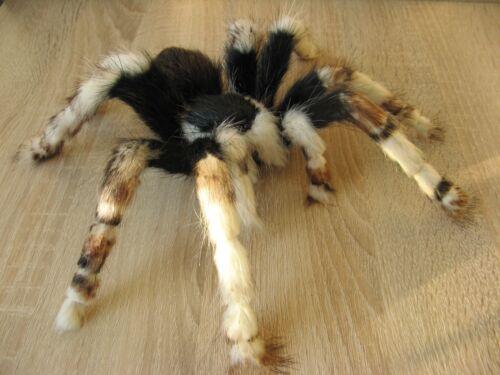 "Oddities Prank Spider 9"" Fake Taxidermy Monster Handmade Plush Tarantula Insect"
