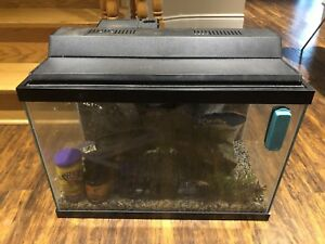 20 Gallon Fish Tank Complete Package