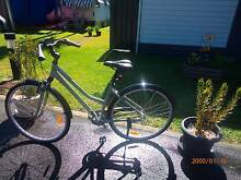 Bicycle - Mens. Arrawarra Coffs Harbour Area Preview