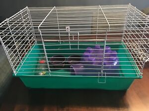 Small animal cage and accessories