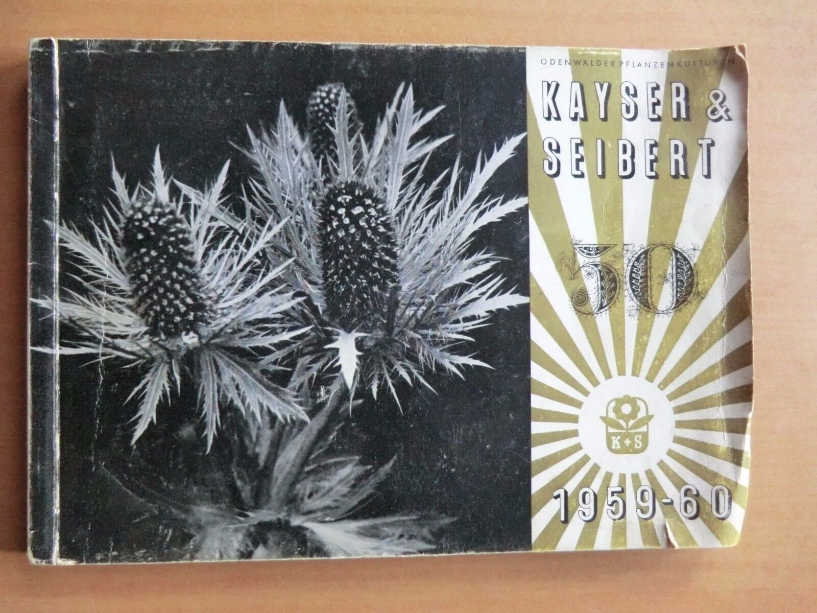 Gartenkatalog Kayser&Seiber 1959/60 Blumen Stauden Kräuter Sorten Beschreibungen