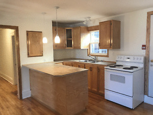 Large re-finished top floor apartment corner 1 Bedroom apt.