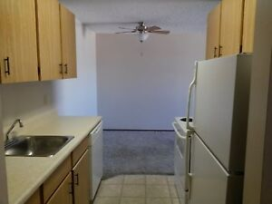 Beautiful LG 3 Bdrm with In- Suite Laundry -     Avail Dec 1st