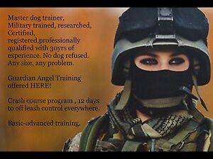 Master Dog Trainer,military,30yr, pit bull pro,certified.safe.