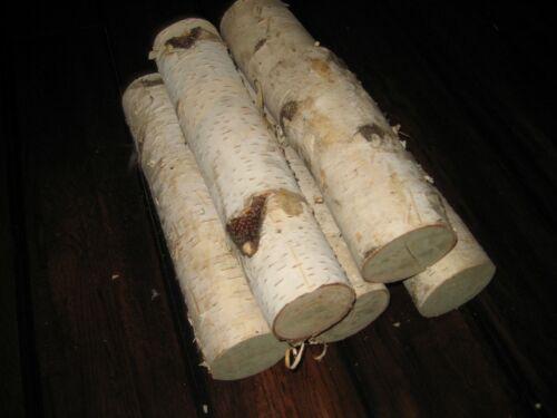 (5) White Birch Logs