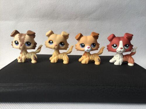 4pcs/lot Pet Shop collie rare LPS dog old toy #2452 #1542 #2210 #1194