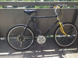 Old school Raleigh