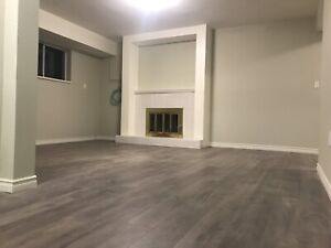 Huge basement suite, Nordel & 116 area, Wi-Fi and Hydro included