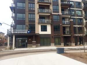 Brand New- One bedroom Condo in Grimsby