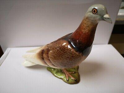 Beswick Pigeon Model 1383