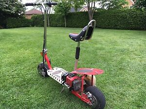 Trottinette gaz stand up scooter
