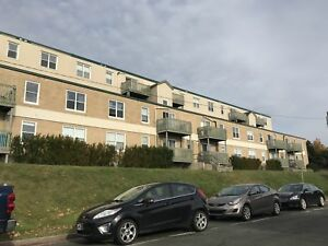 91 Larkhall St #430 – Furnished 2 Bdrm Walking Distance to Mun