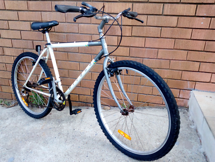 18 speed mountain bike,,serviced and ready to ride