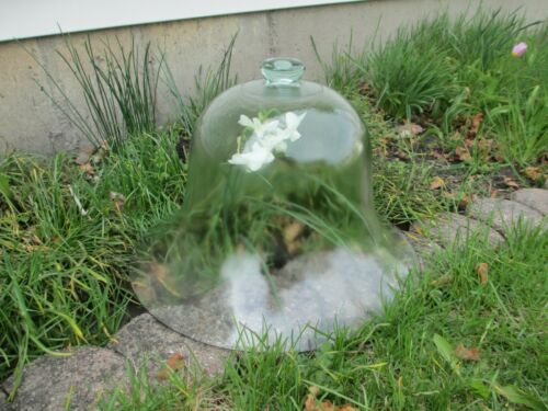 Antique Glass French Country Cloche