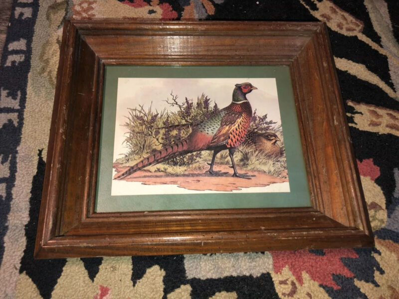 Pheasant Bird Picture With Wooden Wood Frame Wall Decor Cabin 11 X 13