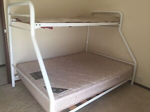 Bunk Bed Undera Outer Shepparton Preview