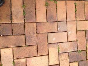 Pavers for driveway Flinders Park Charles Sturt Area Preview