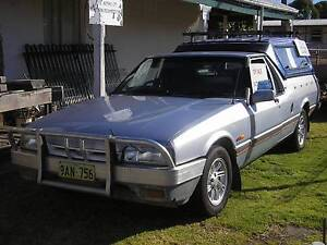 1995 Ford Falcon Ute Katanning Pallinup Area Preview