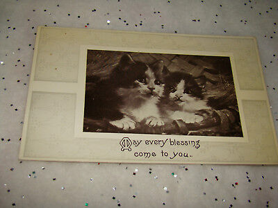 Antique Two Kittens Cats May every blessing Come to You Lithograph Postcard