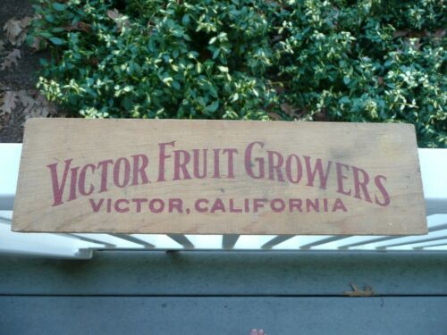 Vintage Victor Fruit Growers, Victor, California Crate End
