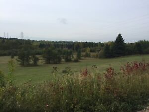 14 acres and house on Mattas road