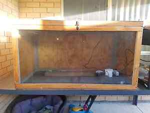 Large reptile enclosure Smithfield Plains Playford Area Preview