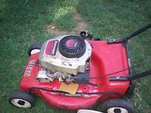TECUMSEH LAWN MOWER ENGINES WRECKING PRICES FROM Runcorn Brisbane South West Preview