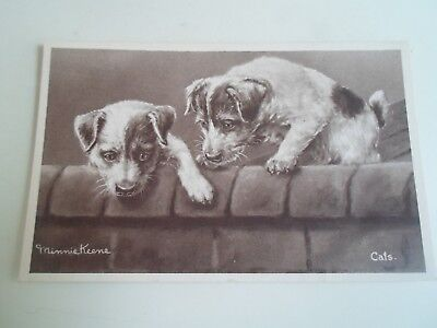 "Usado, Minnie Keene Postcard Jack Russell Terrier Puppy Dogs ""Cats"" - Unposted - §A1748 segunda mano  Embacar hacia Spain"