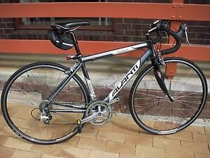 Avanti Monza Comp Series medium road bike Coromandel Valley Morphett Vale Area Preview