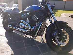 Night rod swap or cash offer Arundel Gold Coast City Preview