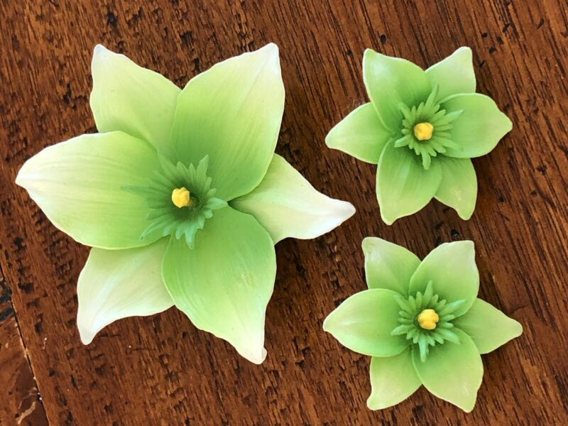 Vintage Western Germany Molded Plastic Green Flower Floral Brooch Jewelry Set