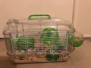 PET MICE WITH CAGE Rouse Hill The Hills District Preview