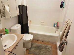 4 1/2  apartment for Rent  Gatineau Ottawa / Gatineau Area image 5