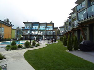 Modern Lakefront Condo with Outdoor Pool