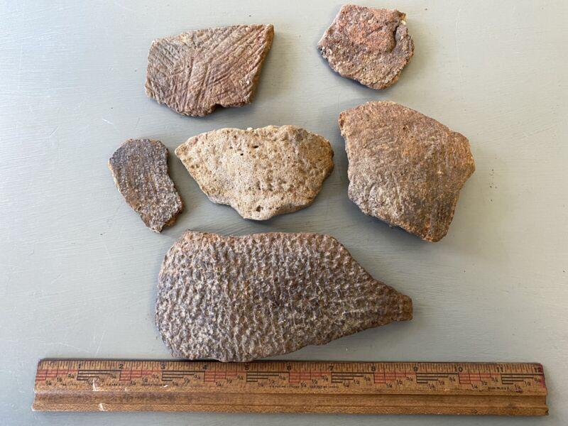 Virginia Native American Pottery Shards Woodland Indian Rim