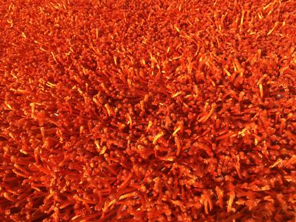 Large Shaggy Orange Rug