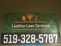 Lawn Care! Rolling, Aerating, Grass cutting, Landscaping!