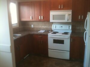 Nice large 3 bedroom condo for rent Evansburg
