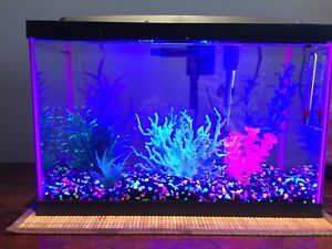 5.5g fish tank and accessories (glow in the dark)