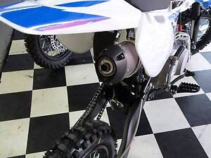 BRAND NEW ZUMA KTX125 PITBIKE DIRT BIKE TRAIL BIKE Russell Vale Wollongong Area Preview