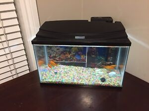 Aquarium for sale 10 Gallons