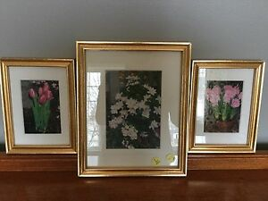Set of 3 Matted Floral Pictures - Wall Decor