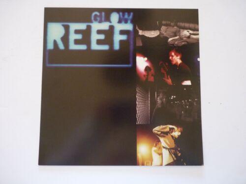 Reef GLOW LP Record Photo Flat 12x12 Poster