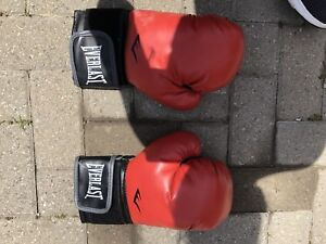 Boxing gloves everlast great condition