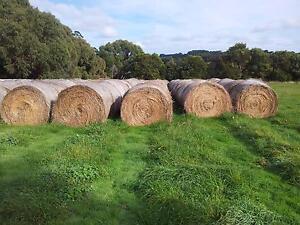 Hay for sale Main Ridge Mornington Peninsula Preview