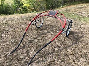 Horse   Equestrian & Livestock Accessories in Saskatoon
