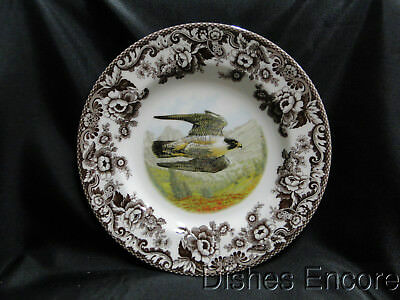 Spode Woodland Birds of Prey Summer Peregrine Falcon: Dinner Plate 10.75 NEW Box