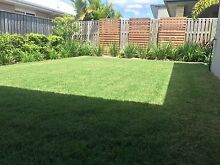 Is your lawn or garden starting to look like a jungle? Mango Hill Pine Rivers Area Preview