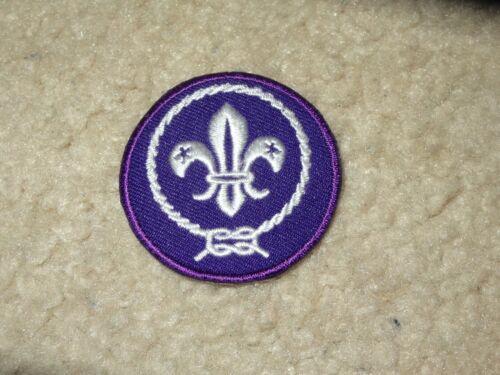Boy Scout BSA Cub Venture Exploring International Uniform World Crest Patch